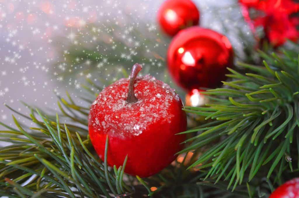 christmas-tree-5764072_1920