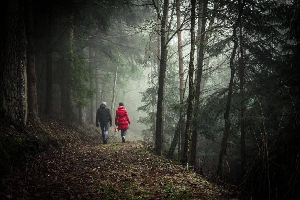 walking-1149747_1920 (1)