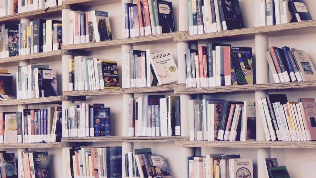 regen-fuerth-bibliothek